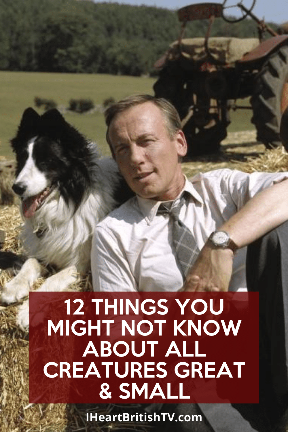 12 Things You Might Not Know About All Creatures Great & Small 5